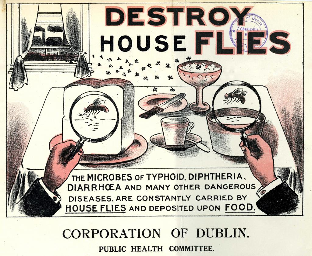 DD033 The Fly Peril, 1914